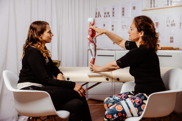 AEQ metoda in anatomija